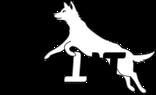 » Hundeführerschein