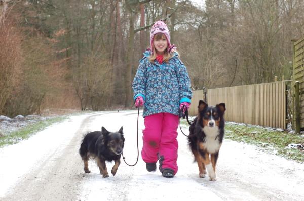 Hundeschule vom 09.02.2013 014